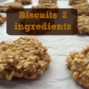 biscuits-2-ingredients-wooloo