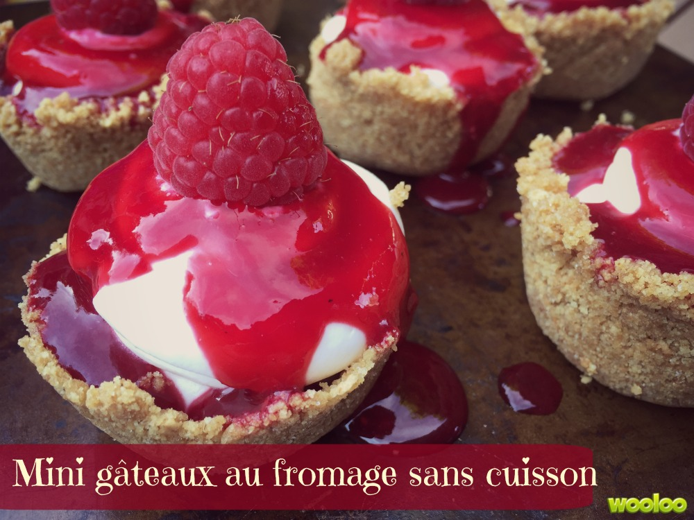 mini gateaux fromage sans cuisson Wooloo