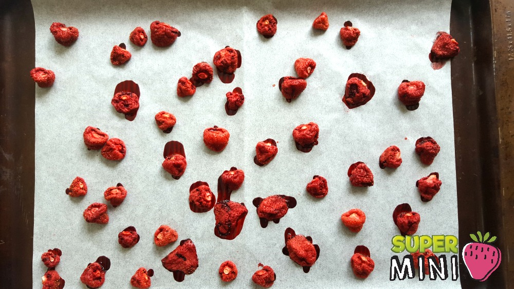 Bonbons aux fraises Wooloo