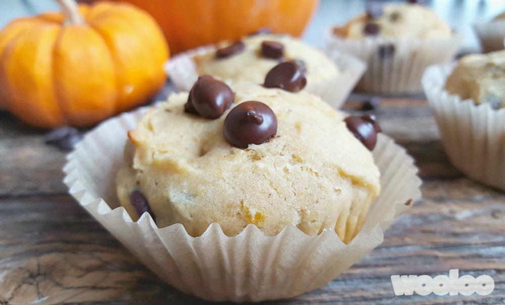Muffins aux restes de citrouille et pépites de chocolat Wooloo