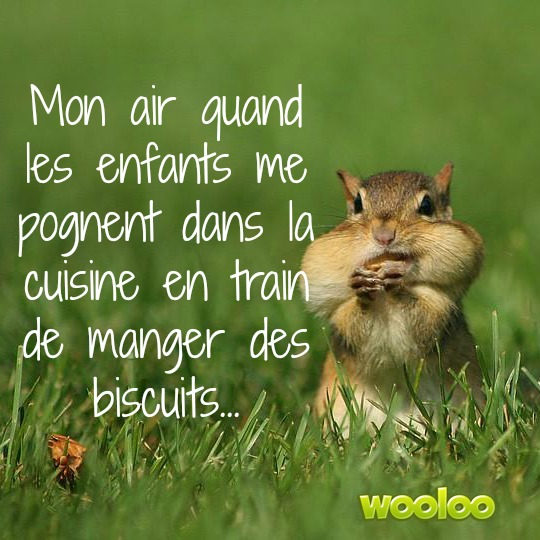 maman mange des biscuits wooloo