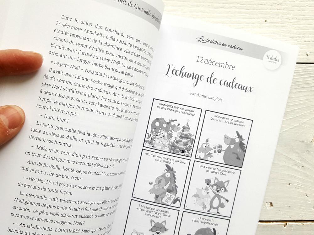 Livre 24 dodos avant Noël / wooloo