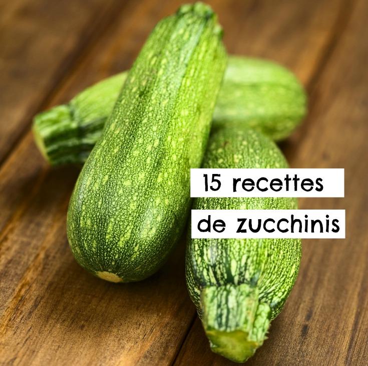 Les 15 meilleures recettes pour cuisiner le zucchini
