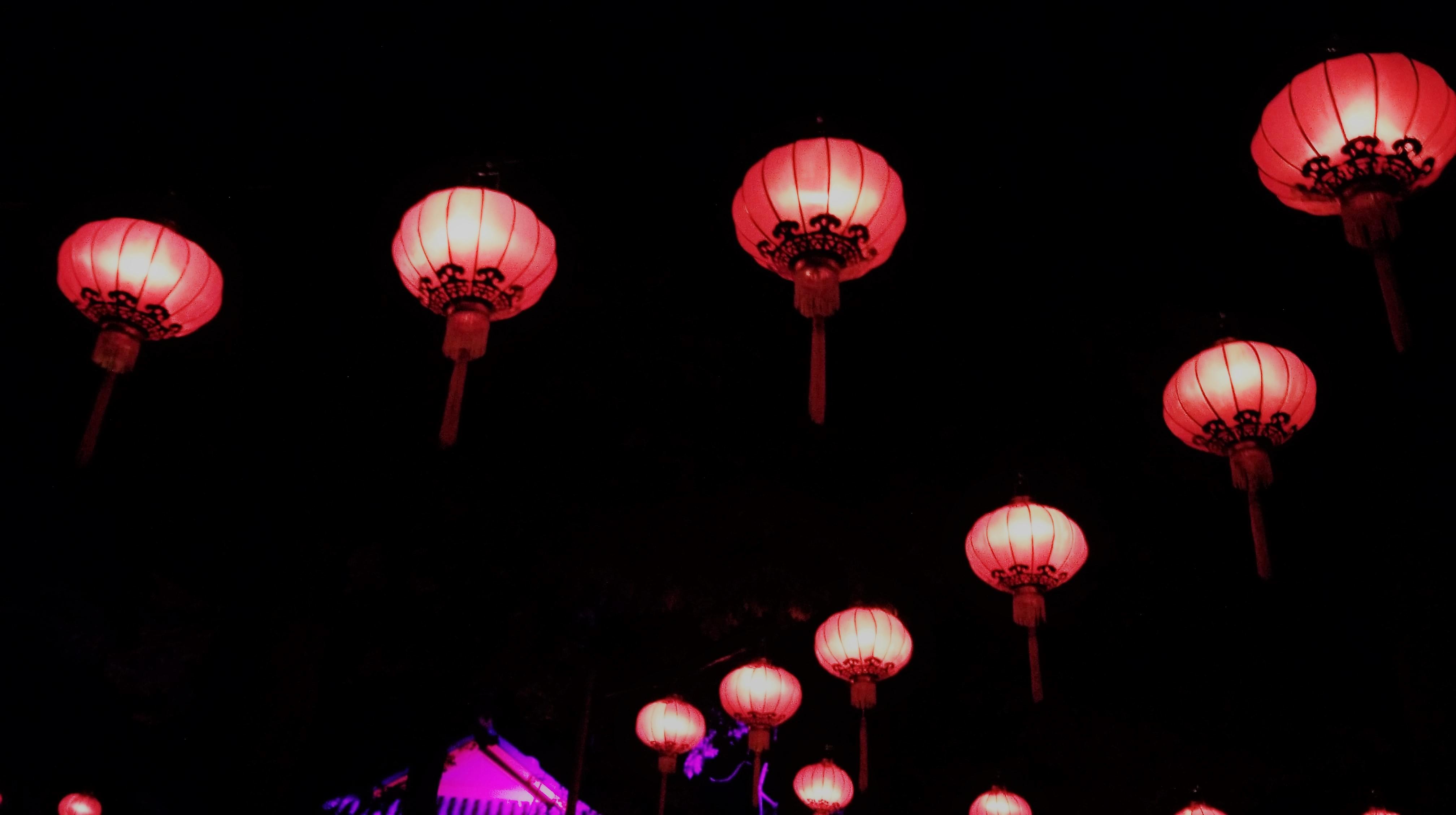 nuit au Zoo wooloo