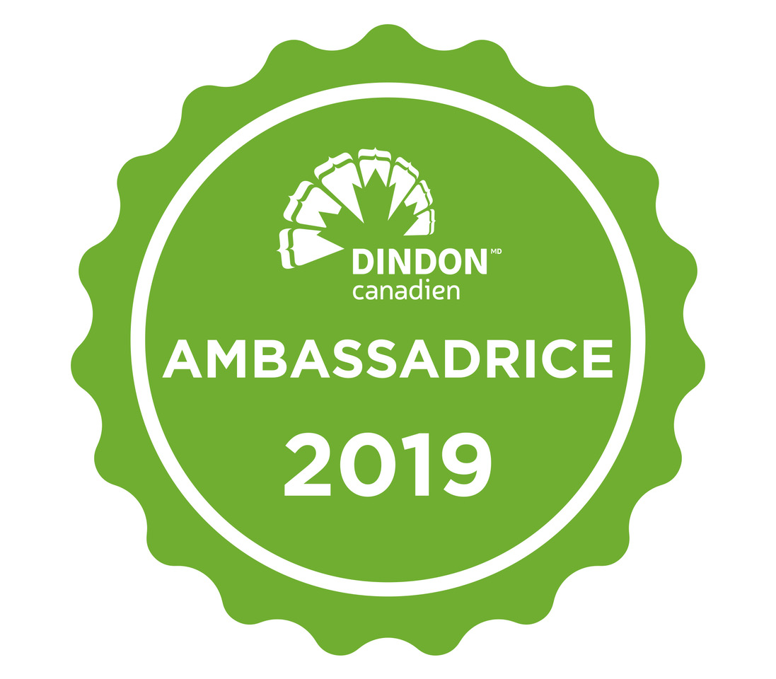 dindon-ambassador 2019-FR-wooloo