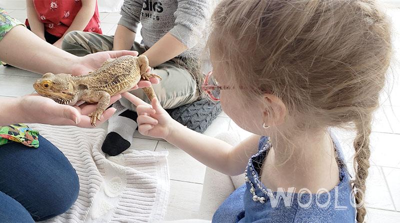 fete-enfant-anniversaire-animation-dinoversaire-wooloo