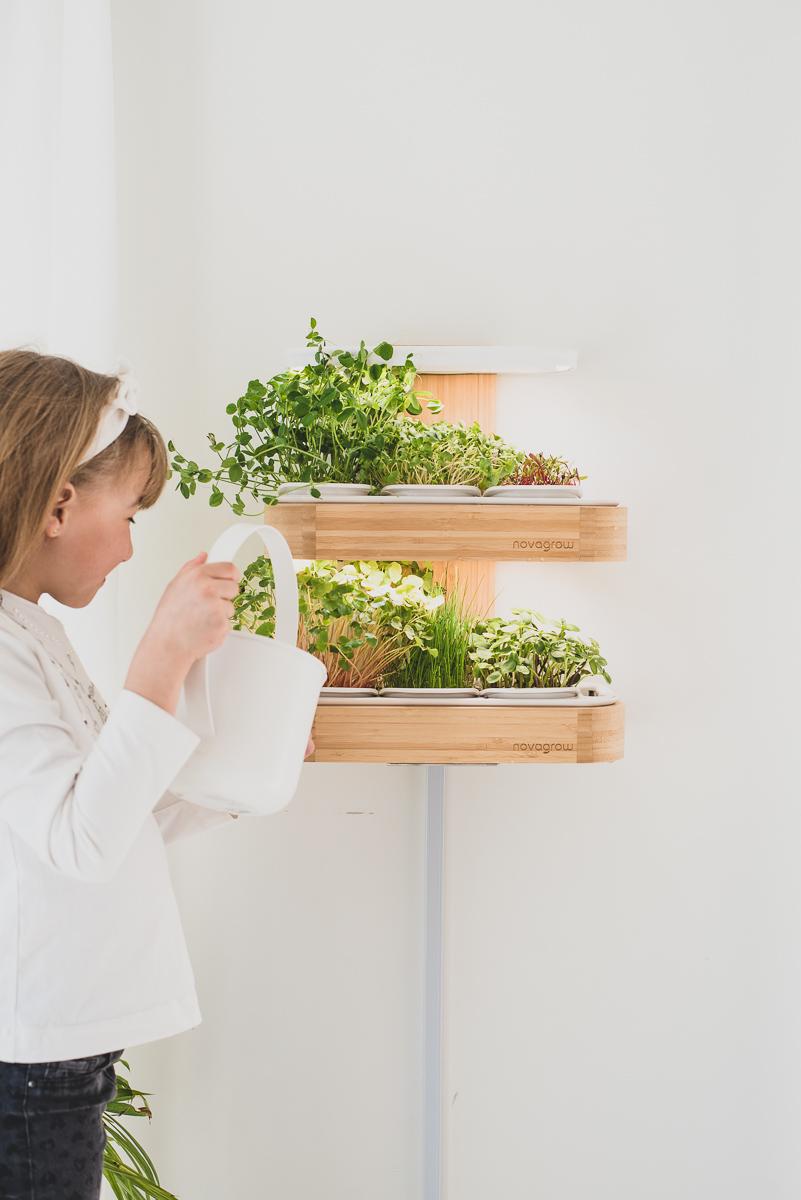 jardin-interieur-novegrow-wooloo_7
